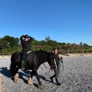 Ryg-træning på hest